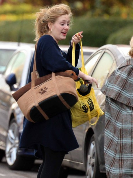 Adele carrying her pet dog