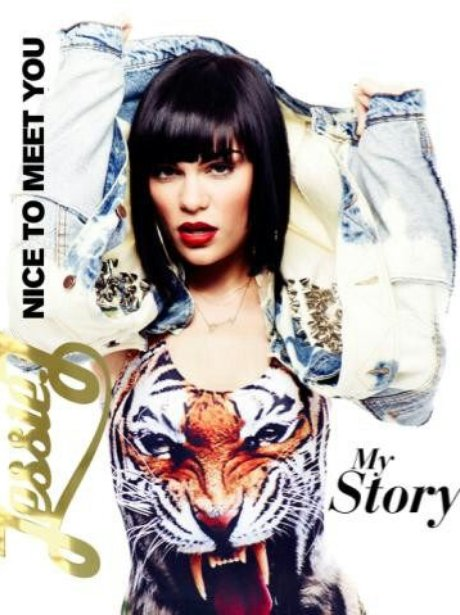 Jessie J's 'Nice To Meet You' book cover.