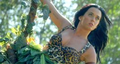 Katy Perry 'Roar music video
