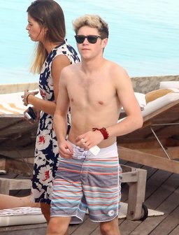 Niall Horan topless