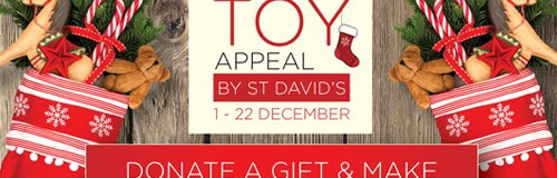 st davids toy appeal
